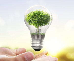 Ahorro Energético con tus Cortinas Roller
